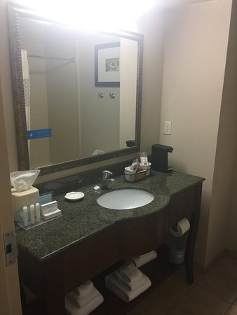 Hampton Inn & Suites Palm Coast: Sink