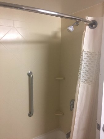 Hampton Inn & Suites Palm Coast: Shower