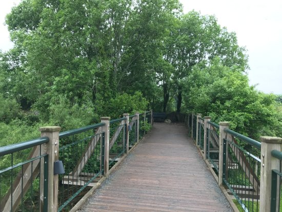 Graafschap Dublin, Ierland: Bridge to site