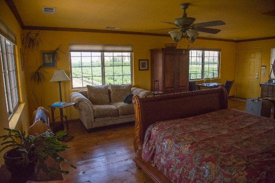 Sanger, CA: Spacious Room with three view filled windows