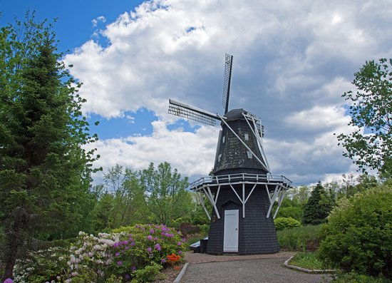 Saint Andrews, Kanada: Windmill and rhododendrons.