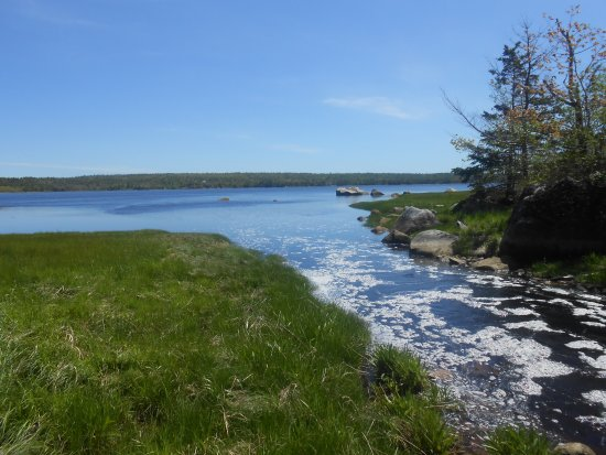 Shelburne, Канада: One of the sights you can see from the trail!
