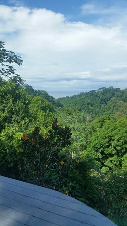 Carate, Costa Rica: View from Bungalow Porch