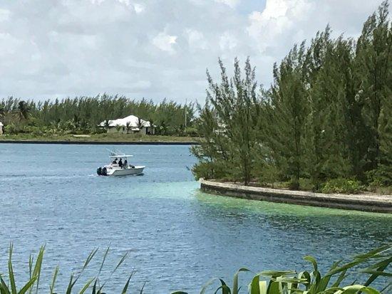 تريجر كاي بيتش مارينا آند جولف ريزورت: Beautiful, friendly Treasure Cay Resort