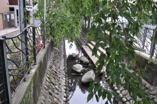 大石橋付近から眺めた二ヶ領用水...