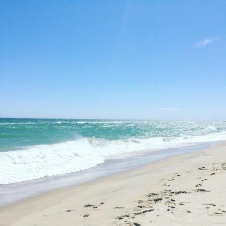 サウス ビーチ
