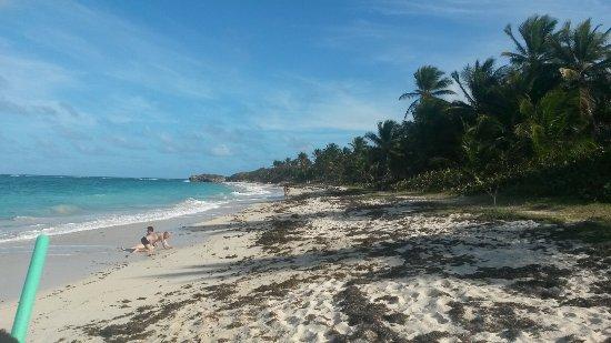 Le Marin, Martinik: 20170326_160033_large.jpg