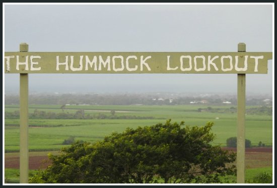 Hummock Lookout