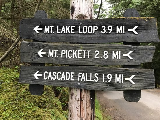 写真Moran State Park枚