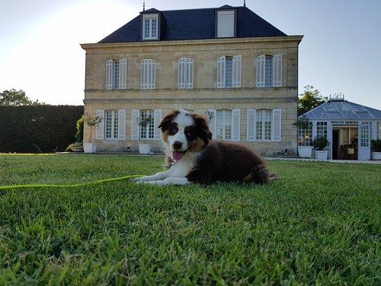 Hotel Chateau Beau Jardin: 20170610_195428_large.jpg
