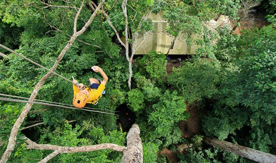 Si Racha, Thailand: Flight of the Gibbon Chonburi