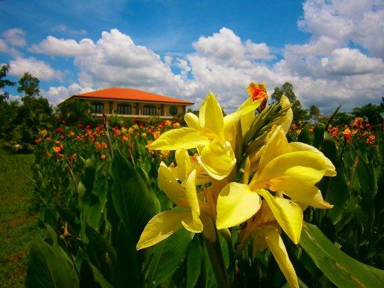 Rosario, Филиппины: Villa Crisanta Garden Resort