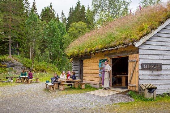 Leirvik, Norvège : getlstd_property_photo