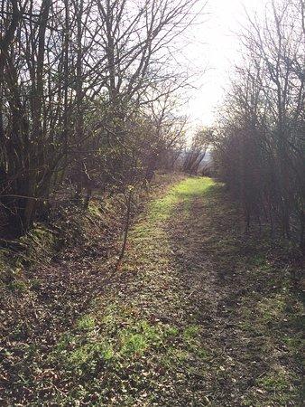 Skelmersdale, UK: hidden footpaths to explore