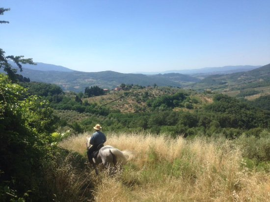 Santa Luce, Italia: View across the hills/valley to the farm