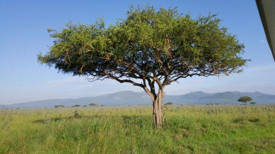 B&B de Homa Bay