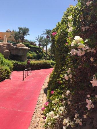 Savoy Sharm El Sheikh: photo0.jpg