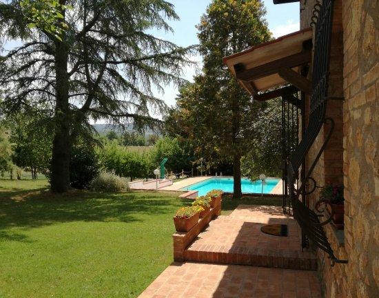 San Rocco a Pilli, İtalya: Vista sulla piscina