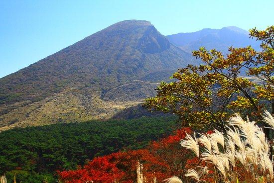 秋のえびの高原