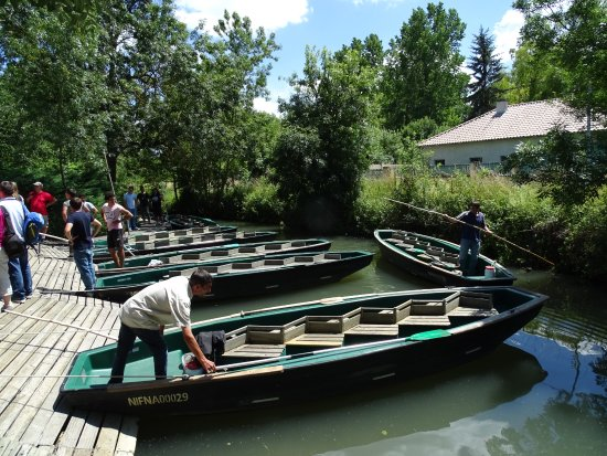 Magne, ฝรั่งเศส: Embarcadère