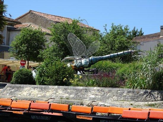 Magne, ฝรั่งเศส: Une libellule de taille!