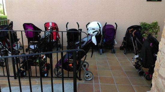 Protur Bonaire Aparthotel: IMAG1136_large.jpg