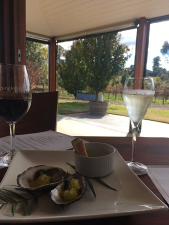 McLaren Vale, Australia: Views at Shingleback Winery