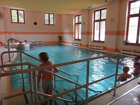 Horní Lomná, Česká republika: hotelový bazén s výřivkou