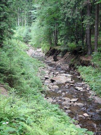 Horní Lomná, Česká republika: v blízkosti řeka Lomná