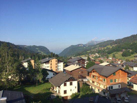 Chalet-Hotel Alpina照片