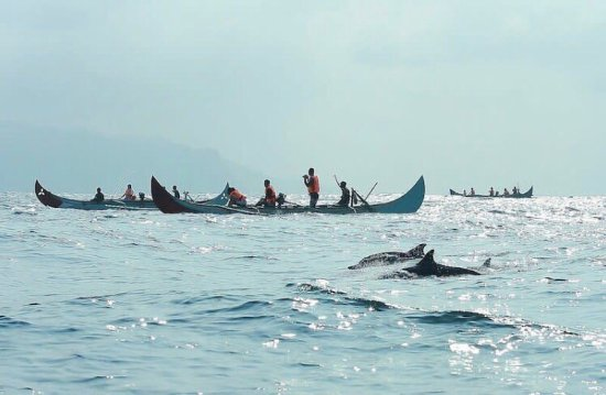 What S So Special About Kiluan Bay In The Province Of