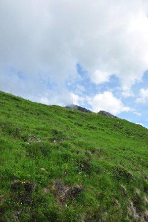 Oberndorf, Austria: Ausblick auf dem Hin- bzw. Rückweg (Kitzsteinhorn)
