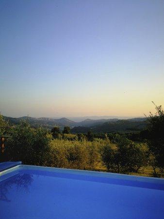 Farmhouse Olmo B&B : Vista su Firenze dalla piscina al tramonto