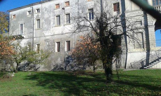 """Villa Violini, Nogarola, Segattini, Degani, detta """"Il Castello"""""""