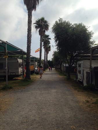 Camping Delfino: photo0.jpg