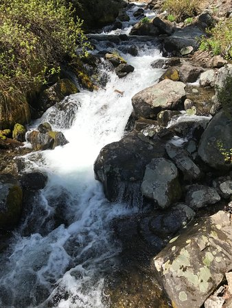 Gallatin Gateway, MT: Rushing stream on the way up (at high water time)