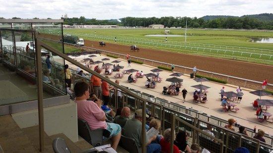 belterra casino and racetrack