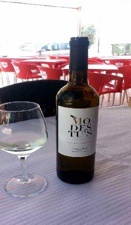 Praia de Mira, Portugal: Vinho MODESTU´s