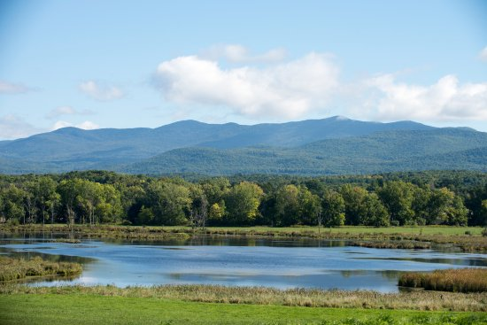 Brandon, VT: The view from the farm