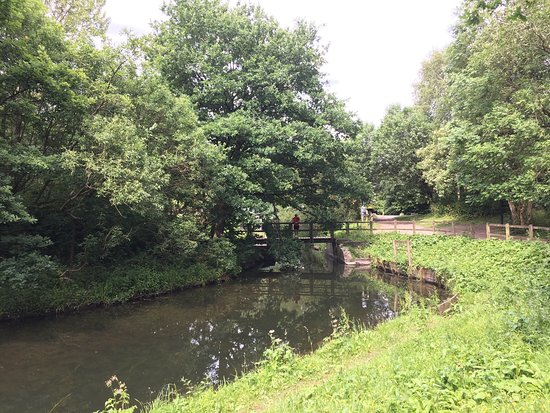 Leigh, UK: photo1.jpg