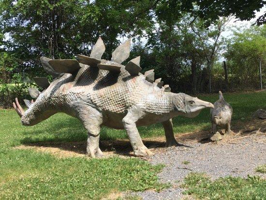 Dinosaur Land: photo5.jpg