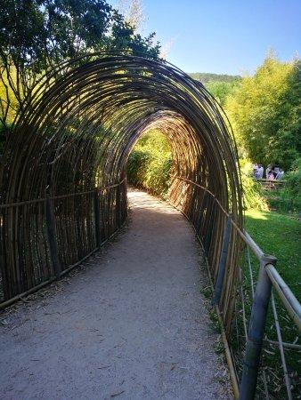 Generargues, Frankrig: La Bambouseraie en Cévennes