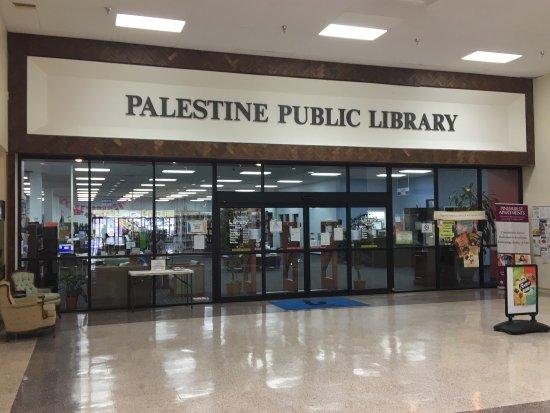 写真パレスチナ枚