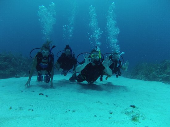 Сан-Педро, Белиз: Get your PADI Open Water Certification with Scuba Daze Belize.
