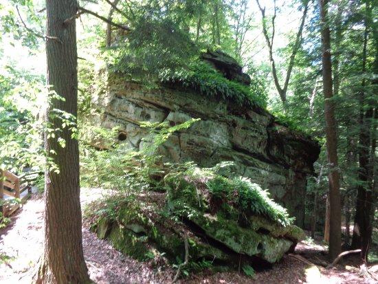 Hillsboro, Virginia Occidentale: Beartown state park on Droop Mtn WV