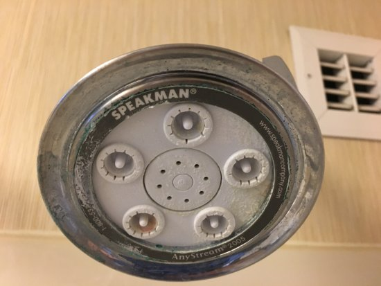 Conshohocken, PA: Worn out shower head
