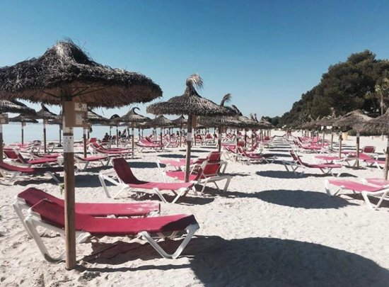 Clear water - Bild von Playa de Alcudia, Port dAlcúdia - TripAdvisor