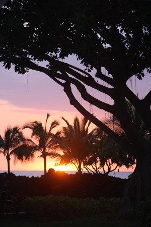 Keauhou Kona Surf & Racquet Club: Lanai view