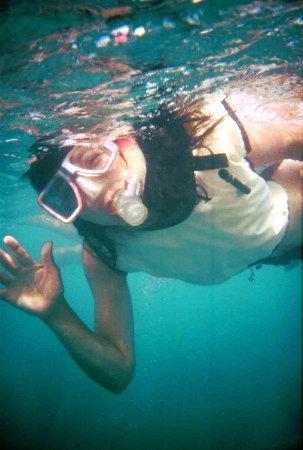 Quicksilver Snorkel Tours: Hi. I hope you will come too.