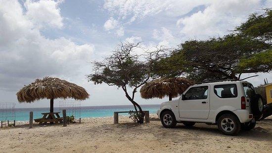 Washington-Slagbaai National Park, Bonaire: Our 4wd rental car jimmy